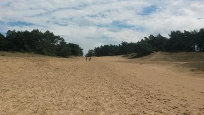 Zand, zand en stipjes